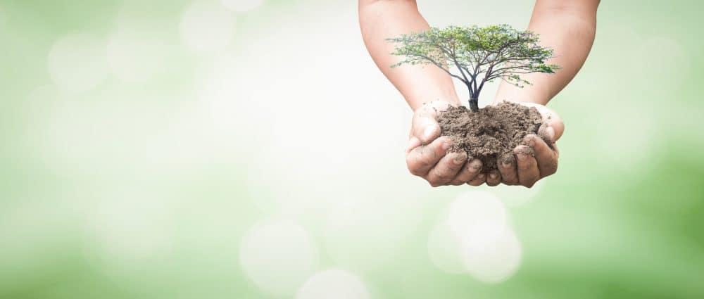 חומרי ניקוי אקולוגיים – מנקים היטב ושומרים על הבריאות והסביבה
